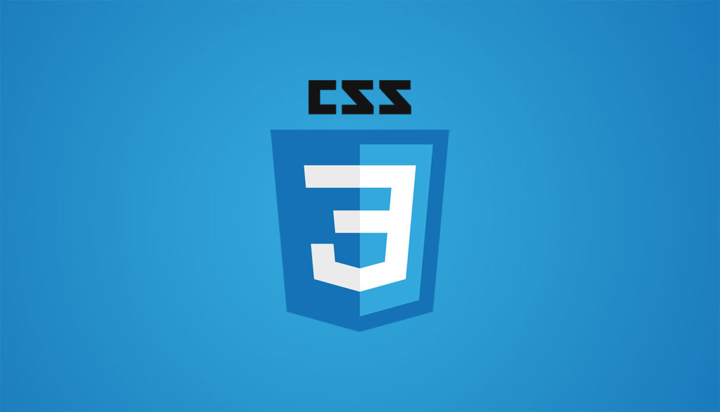 Basic CSS Guide for Beginners